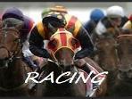 Horse Racing Fun