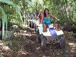 ATV in the Rainforest on My Discounted Tours
