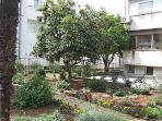 Garden in front of the apartment