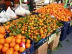 Oranges from Sicilia
