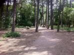 Formby Pinewoods....just at the end of the road! Two minutes in car or fifteen minute walk