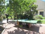 Table tennis in spacious yard