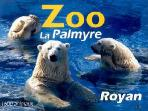 La Palmyre zoo nearby