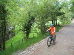 Enjoy cycling at Coed y Brenin