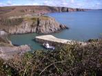 Stackpole Quay - great tearoom and walks