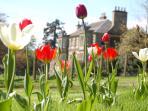 Spring at Kinloss House