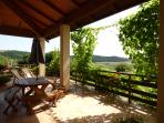 www.sellanraainitaly.it - A curtain of grapes on the terrace!