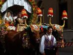 Sant'Efisio celebrations in Pula ,1 May