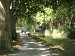 Enjoy the cool green glades of the Canal du Midi