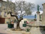 La place du village de Magrie où tronent les oliviers