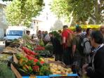 Olonzac.  Together with this market on your doorstep - visit Mirepoix, Narbonne, and Lezignan...