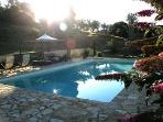 The pool as the sun goes down.........Hot hazy high summer butterfly days
