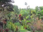 jardin tropical entièrement clos sur 5000m2