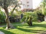 piante del giardino esterno alla villa