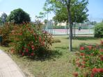 Tennis courts at Pizzo Beach Club