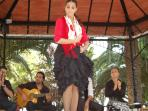 flamenco show every Wednesday