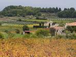 Luberon Landscape