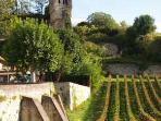 Cahors, Gaillac and Marcillac Vineyards