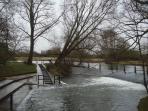 The River Cherwell, half way to town center across the park