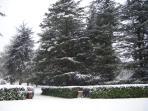 exceptionnel - le jardin du pigeonnier et le parc de cèdres sous la neige