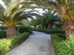 Walk round Marasua gardens