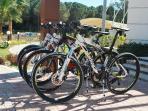 mountains bikes