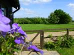 Winters Tale Farm  garden