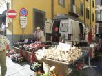 Local market town Castelnuovo only 2 miles away
