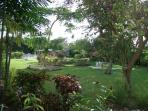 The property is set in 5 acres of beautiful tropical gardens