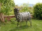 Clun sheep sculpture