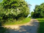 Access lane to Hilltop Barn