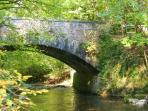 Wald Villa Üssbach Brücke Zufahrt