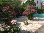 relax on deckchair in the garden