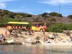 escursioni in trenino sull'Isola dell'Asinara