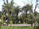 City Garden/Park