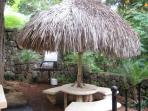 Palapa and grill