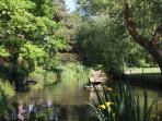 Haynes Farm Pond