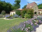 Our fragrant lavender, jasmin, roses, thyme, rosemary...