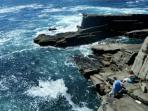 Discover a rocky coastline just a 10 minute walk from the cottage.