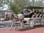 Horse drawn carriage rides through historic downtown Wilmington