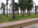Paseo marítimo cercano al apartamento. Césped, palmeras, arena, playa y sol.
