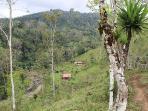 Finca Pura Vida, 10 ha: Ansicht beider Ferienhäuser