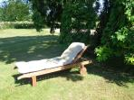 Take a nap under the weeping ash tree
