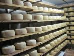cave de fromage à Augirein