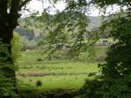 Views of Meol Hebog and the Welsh Highland Railway from the patio