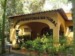 Bosque dos Jequitibas, além de muito verde, abriga um zoológico, teatro e museu.