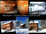 Chalet Aconit, 7 pers, terrasseSUD, pied piste