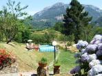 Garden with mountain views!