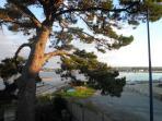 vue sur anse de Penfoulic, en arrière plan Port la Foret