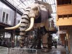 Machines of the Isle Nantes 90mins:Ride a Giant Elephant around town & see the other great models.